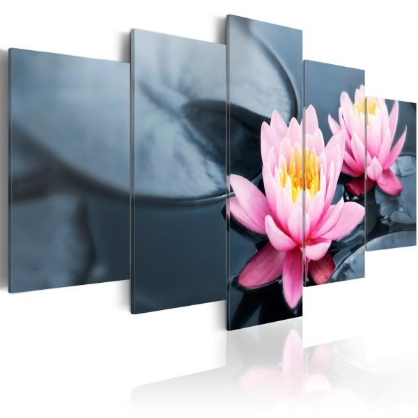 Obraz - Marzenie o lilii wodnej (100x50 cm) A0-N1492