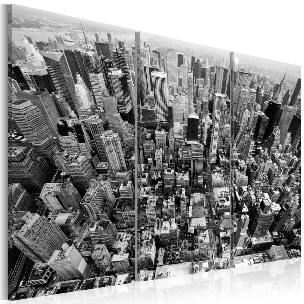 Obraz - Niesamowity widok na dachy Nowego Jorku (60x40 cm) A0-N1364