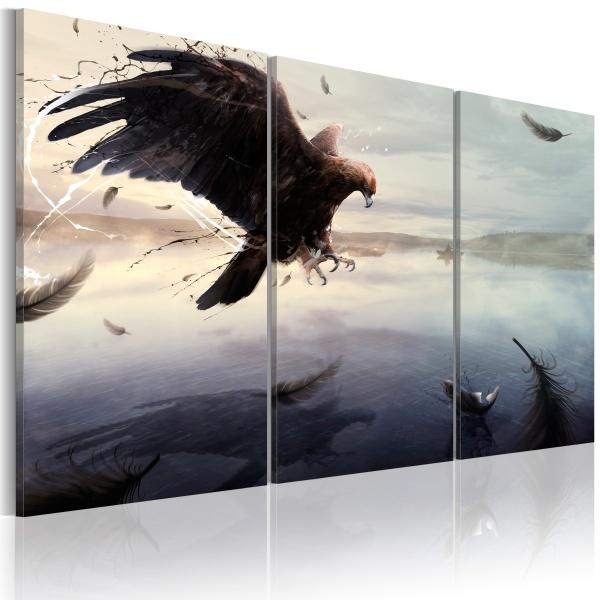 Obraz - Orzeł nad taflą jeziora (60x40 cm) A0-N1627