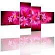 Obraz - Piękno lilii A0-N1182