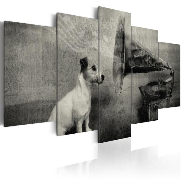 Obraz - Piesek wsłuchujący się w muzykę z gramofonu (100x50 cm) A0-N1505