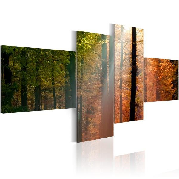 Obraz - Promyki słońca pośród drzew (100x45 cm) A0-N1394