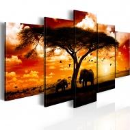 Obraz - Ptaki nad sawanną (100x50 cm)