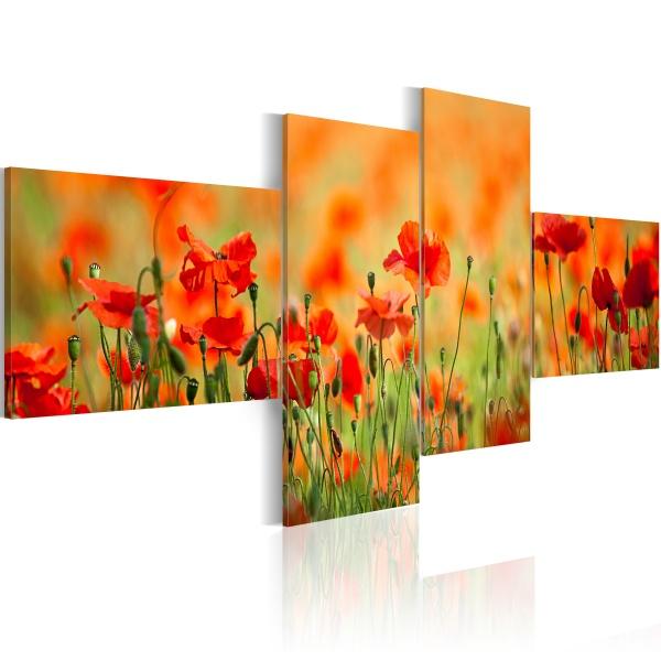 Obraz - Radosna makowa łąka (100x45 cm) A0-N1412