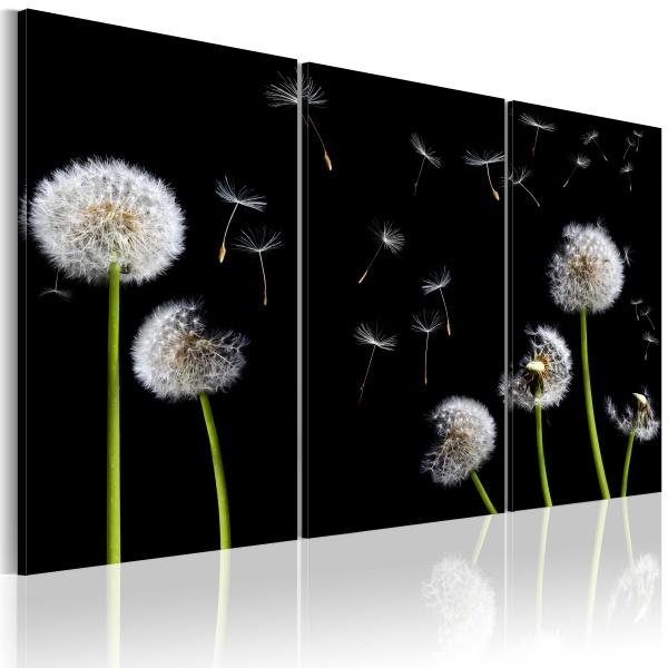 Obraz - Rodzinka dmuchawców (60x40 cm) A0-N1489