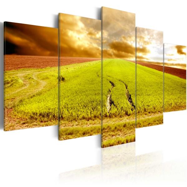 Obraz - Ślady kół na polu (100x50 cm) A0-N1582