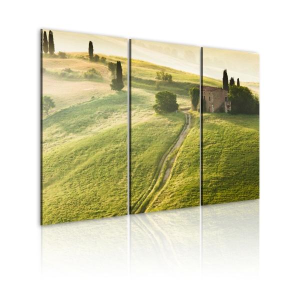 Obraz - Słońce nad Toskanią (60x40 cm) A0-N1539