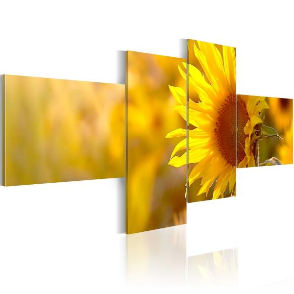Obraz - Słoneczne słoneczniki (100x45 cm) A0-N1414