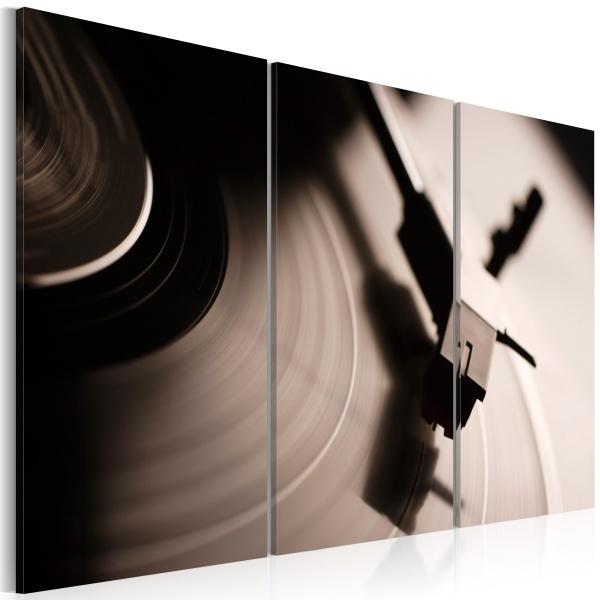 Obraz - Stylowy gramofon (60x40 cm) A0-N1457
