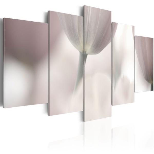 Obraz - Tulipan w szarościach (100x50 cm) A0-N1420
