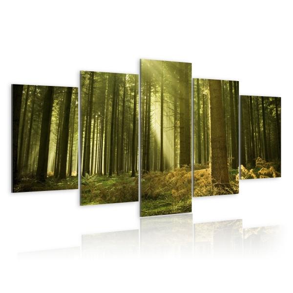 Obraz - Tylko natura (100x50 cm) A0-N1396