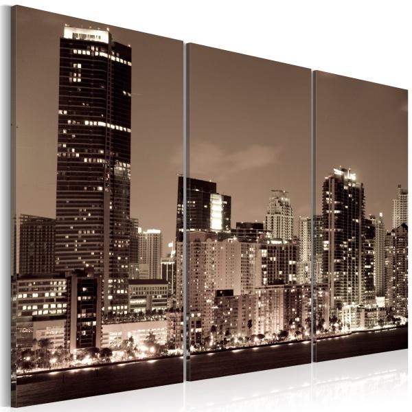 Obraz - Wieczór w Miami (60x40 cm) A0-N1458