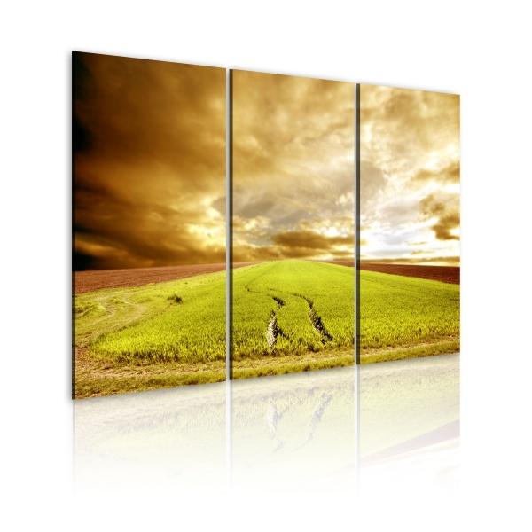 Obraz - Wiosna na wsi (60x40 cm) A0-N1581