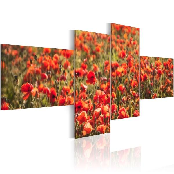 Obraz - Wszędzie maki! (100x45 cm) A0-N1590