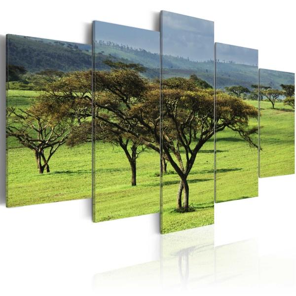 Obraz - Zielona Afryka (100x50 cm) A0-N1541