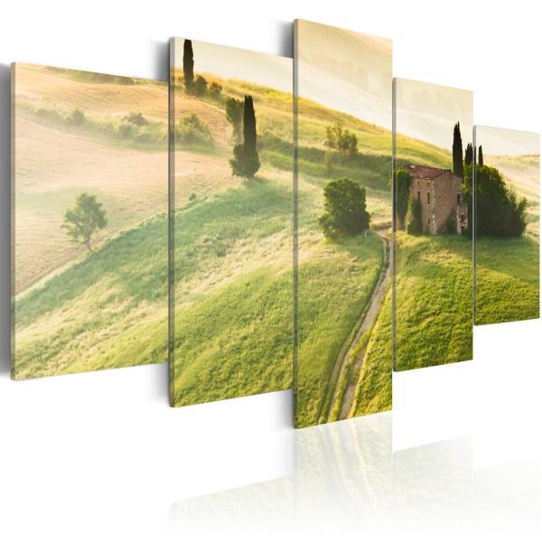 Obraz - Zielona Toskania (100x50 cm) A0-N1542