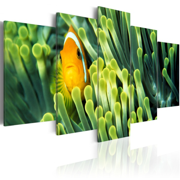 Obraz - Życie w głębiach oceanu (100x50 cm) A0-N1513