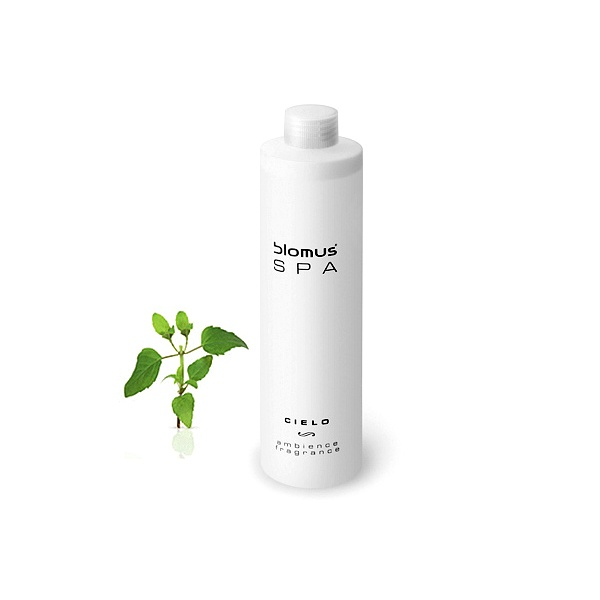 Olejek o zapachu zielonej herbaty Blomus SPA Cielo B31043