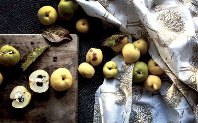 Skarby jesieni - grzyby, orzechy i domowe weki