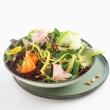 Temperówka do warzyw z 3 ostrzami Mastrad zielona MA-F21718