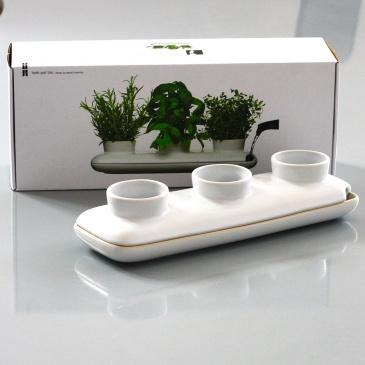 wazon na zioła