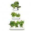 wazon na zioła Sagaform