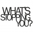 WHAT'S STOPPING YOU? wsy1-1