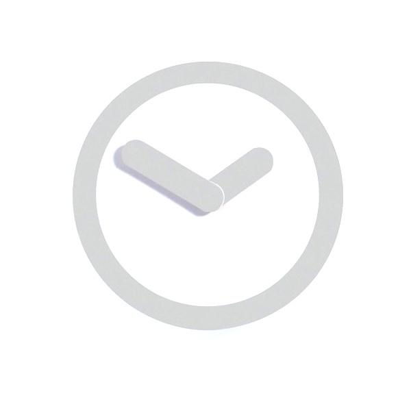 Zegar ścienny 25 cm NEXTIME Focus silver 2615zi